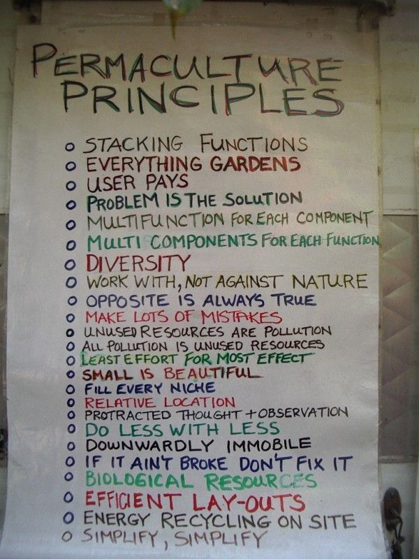 #PERMACULTURE PRINCIPLES http://www.onegreenplanet.org/lifestyle/why-permaculture-aint-just-about-gardening/