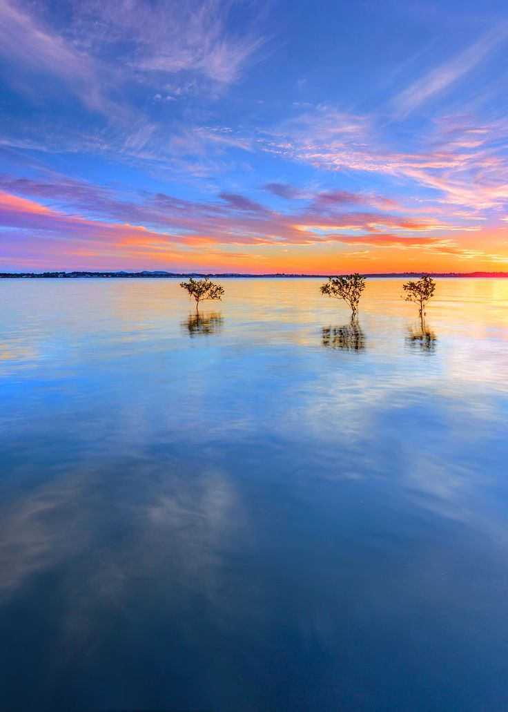 3 Trees by Beth Wode on 500px