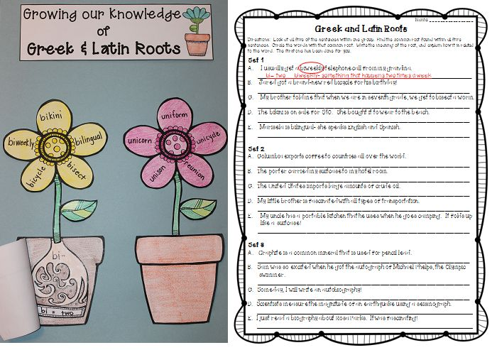 Greek And Latin Roots Craftivity Flower Pots Worksheets