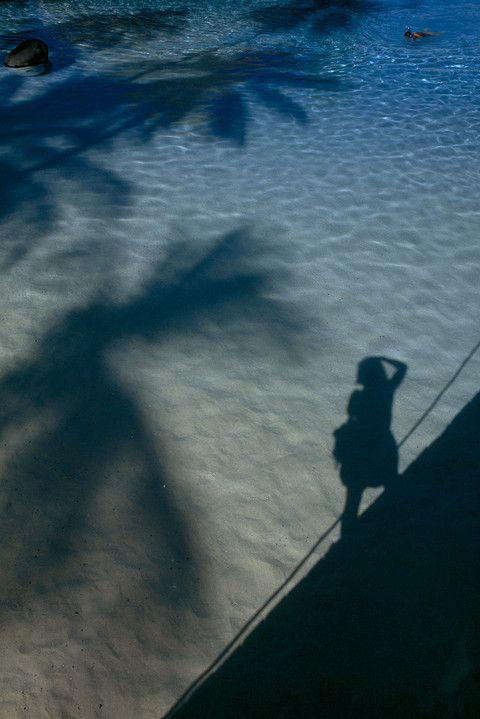 1996 Tahiti Adası'nda okyanus yüzeyine düşen palmiye ağaçları ve fotoğrafçının gölgesi.