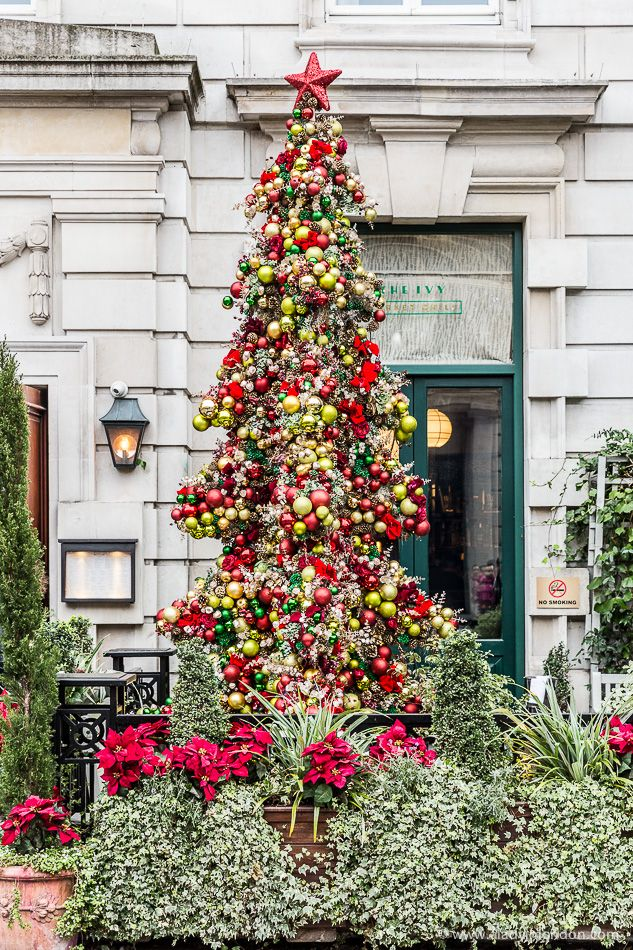 7 Christmas Trees In London These Are The Best London Christmas Trees London Christmas Amazing Christmas Trees Country Christmas Decorations