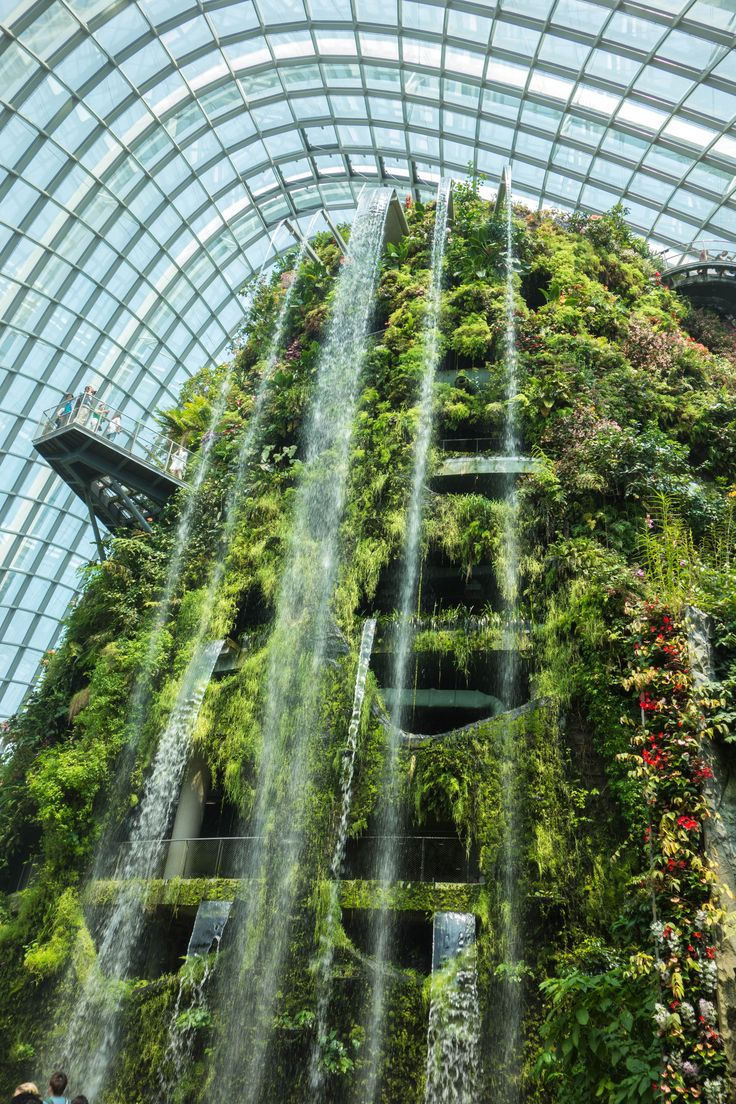 Cloud forest at the Gardens by the Bay in Singapore