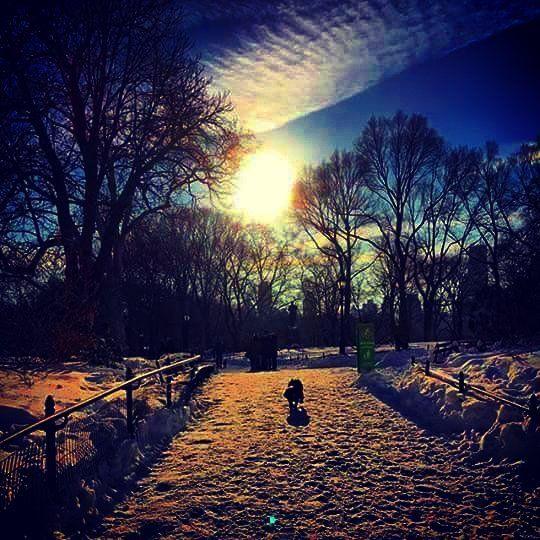 #newyorkcity #newyork #NYC #NY #snowday #Snowstorm #blizzard #jonas #jonassnowstorm #snowstormjonas #snowstormjonas2016 #jonas2016 #blizzard2016 #weather #instaweather #photographer #photography #instaphotographer #instasnow #sunset #cbsnewyork #nbcnewyork #fox5ny #pix11news #stormteam4ny #weatherchannel #itsamazingoutthere #nbc4ny #ny1 #CentralPark by sagesurge