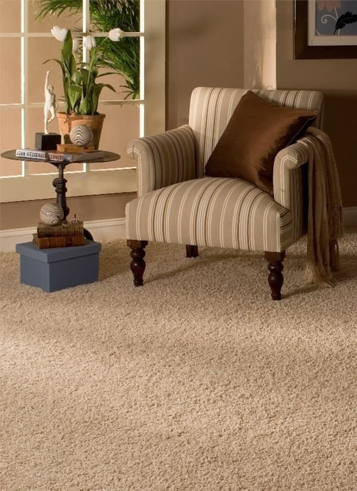 Best Carpet Images On Pinterest Cleaning Recipes Collar