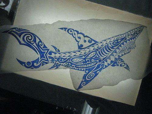 polynesian tattoo designs   ... Kirituhi Polynesian Shark Tattoo Design « Tattoo Designs and Artists