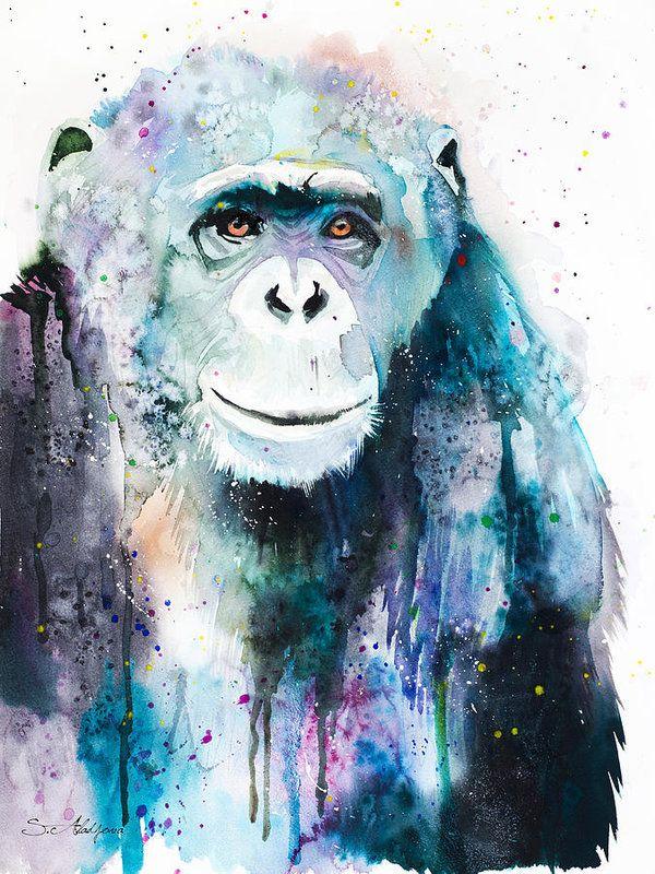 Chimpanzee Watercolor Painting Print Print featuring the painting Chimpanzee by Slavi Aladjova
