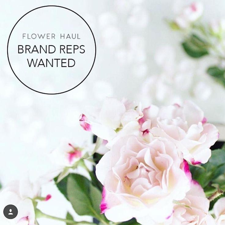Well hello amazing opportunity ! @flowerhaul