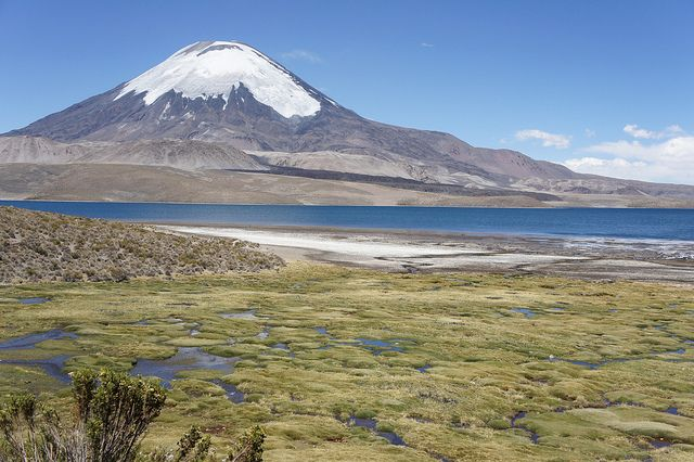 Lauca National Park is located in Chile's far north, in the Andean range and is one of the top tourist attractions in Chile. The most spectacular feature in Lauca is the beautiful Lago Chungará, one of the world's highest lakes. Looming over it is the impossibly perfect cone of Volcán Parinacota, a dormant volcano with a twin brother, Volcán Pomerape, just across the border with Bolivia.