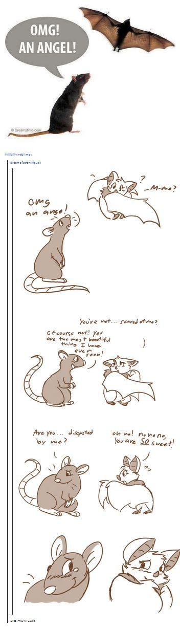I'm a Bat... or Rat... Rabat...  Barat... shipper!