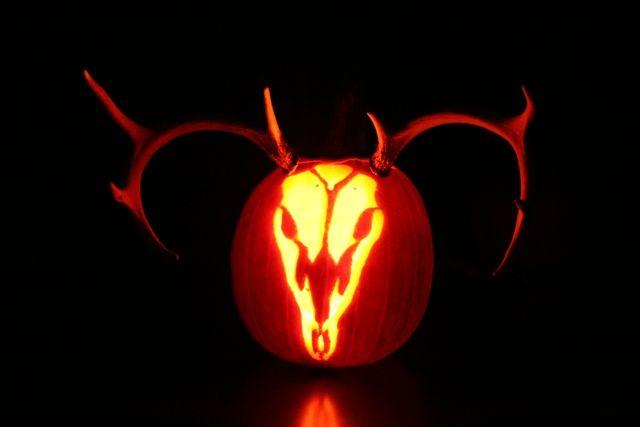 best 25  pumpkin carving stencils free ideas on pinterest