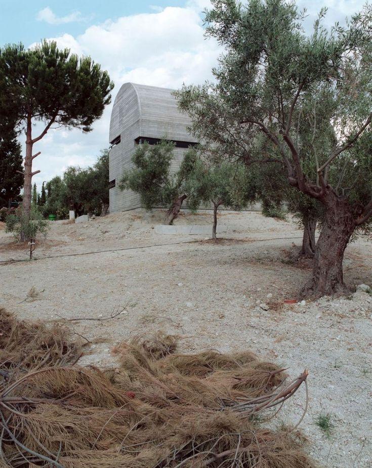 landscape house building design with big tree around