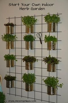 Indoor #Herb Garden. Herbs are small and easy to grow.  Great idea to have scissors handy!  I'm always running out to to the patio to grab a handful of something