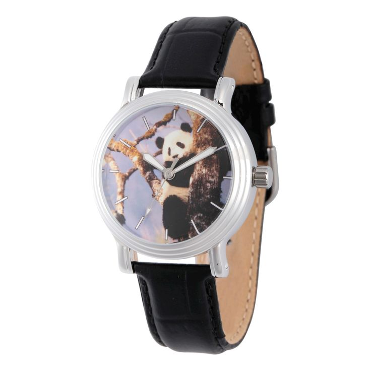 Women's Discovery Channel Animal Planet Silver Vintage Alloy Watch - Black