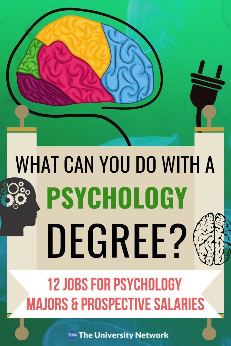 12 Jobs For Psychology Majors The University Network Psychology Jobs Psychology Major Psychology Degree