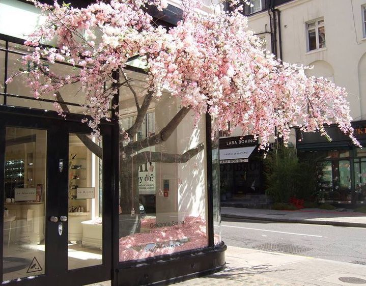 Boy With Pink Flowers Jikook Flower Shop Floral Shop Store Window Displays
