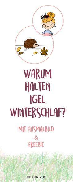 """Was machen Igel im Herbst? Sie bereiten sich auf den Winterschlaf vor. Aber warum? Das erklärt Isi Igel ihrer Freundin Prinzessin Honigsüß in einer Lerngeschichte für Kinder und Kleinkinder in Kindergarten, Kita und Vorschule. Mit Freebie als Ausmalbild - und als Beschäftigung bei Regenwetter. ;) Viel Spaß wünscht """"Hallo liebe Wolke""""! #kids #diy #printable #lernen #herbst"""
