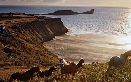 Rhossili Bay named Britain's best picnic spot