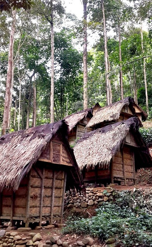 Baduy Village: The local Baduy people live traditionally without electricity. Houses are made from bamboo and local wood...