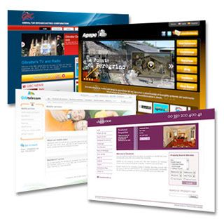 Jasa Pembuatan Website Lembaga dan Organisasi