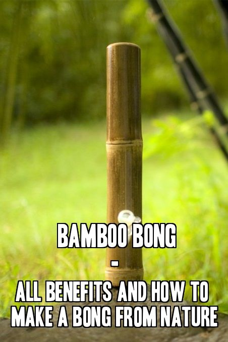 Bamboo Bong – All Benefits and How To Make a Bong From Nature From RedEyesOnline.net