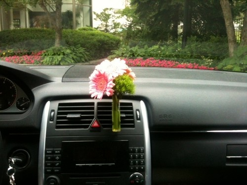 Car Auto Flower Vase Vase Clip Fit Any Air Vent Style