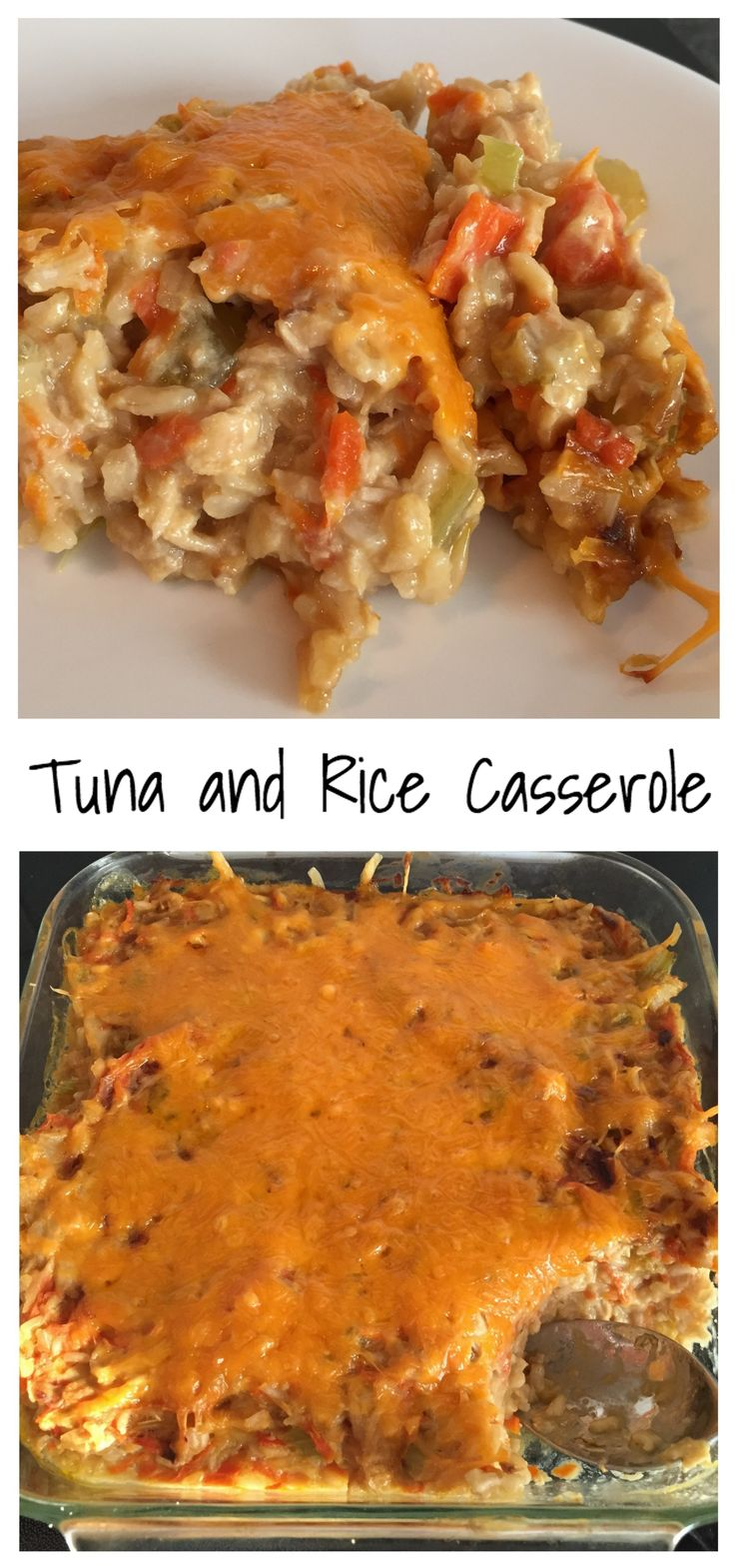 Canned tuna, brown rice, and lots of vegetables in a milk and cheese sauce.                                                                                                                                                                                 More