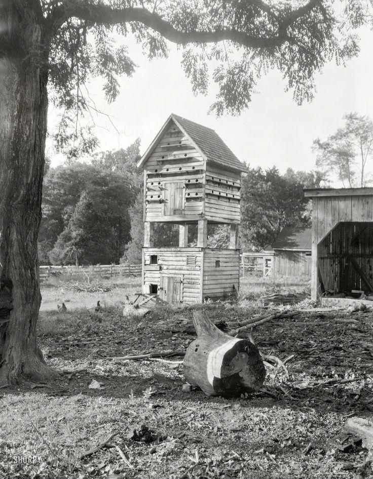 Shorpy Historic Picture Archive :: Coop de Ville: 1935 high-resolution photo