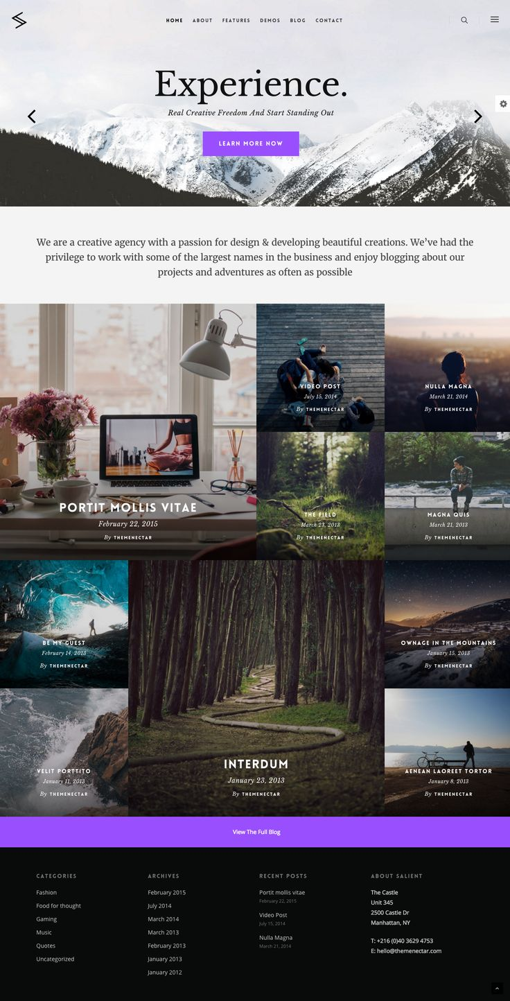 Modern Blog #Wordpress #template | Download http://themeforest.net/item/salient-responsive-multipurpose-theme/4363266?ref=sinzo
