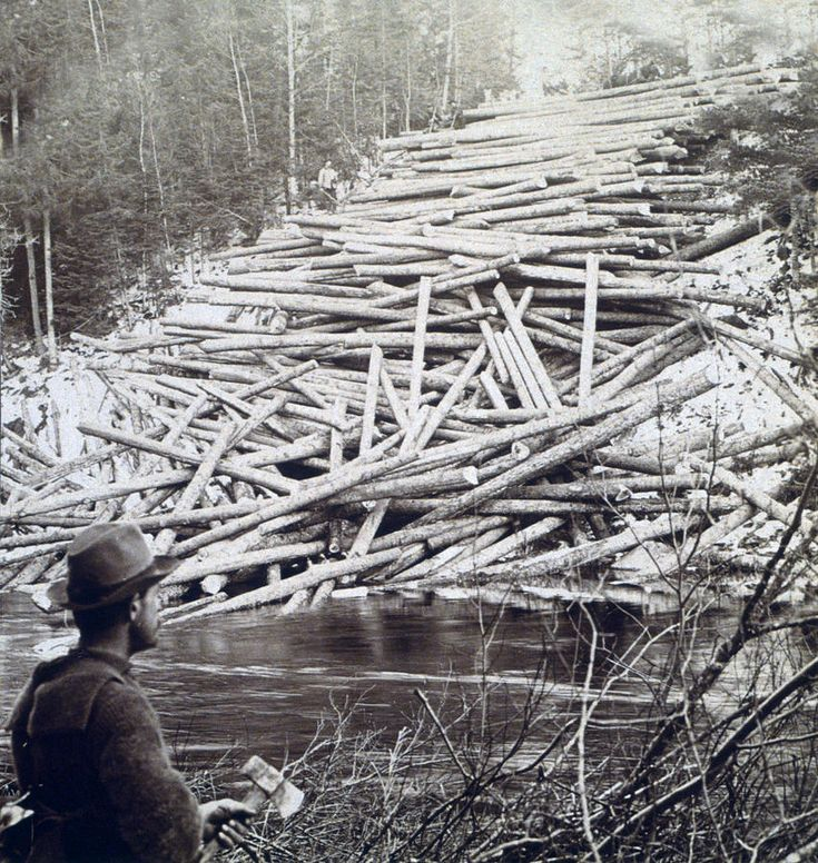 Maine Logging - C 1903, Fine Art America