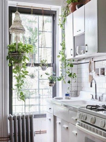 きれいなグリーンが空中を彩る「ハンギングプランター」。ツル性の植物にぴったりの飾り方です。キッチンにはハーブ類のプランターもよく合います♪