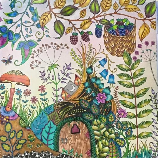 330 Best Enchanted Forest Coloring Book Images On Pinterest