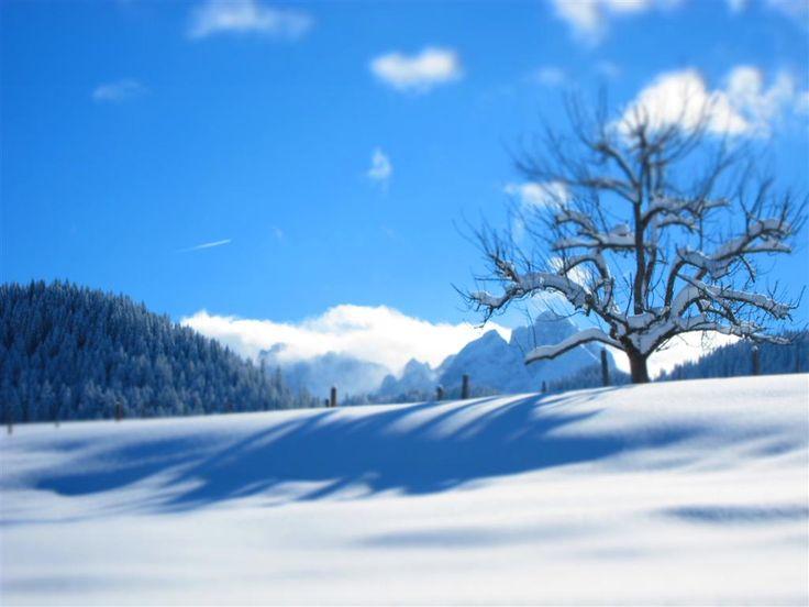 Rußbach im Winter