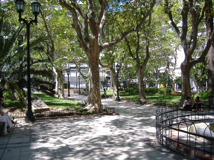 plaza - Hledat Googlem