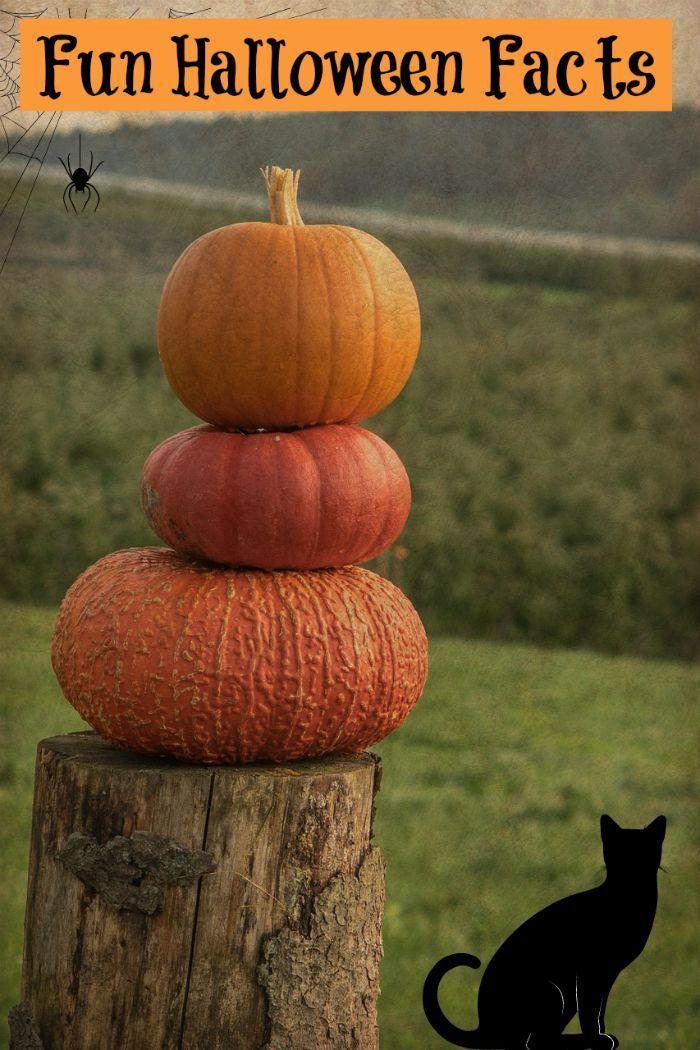 11 fun halloween facts you really want to know - Strange Halloween Facts