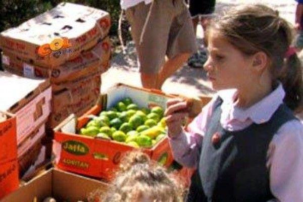 Innsamling til fattige i Israel.