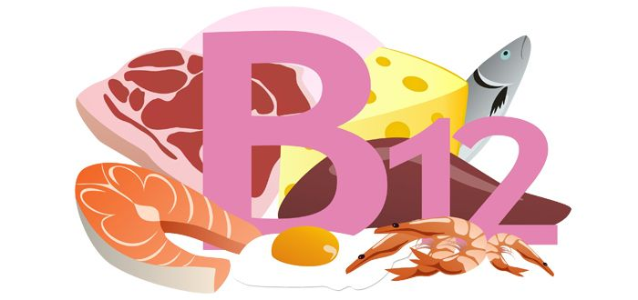 Vitamin B12 is needed for producing and maintaining new cells, including nerve cells and red blood cells. It is also needed to help make DNA.