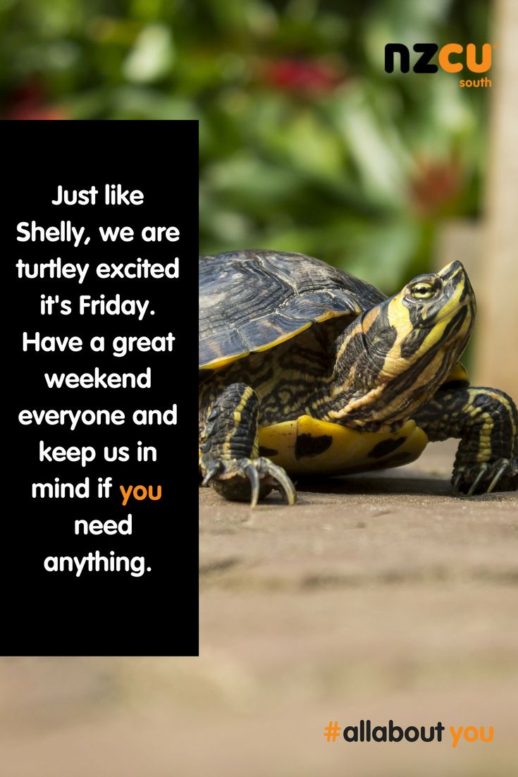 Happy Friday everyone! We are nearly there! Finish the week strong and enjoy the weekend. #happyfriday #nzcusouth