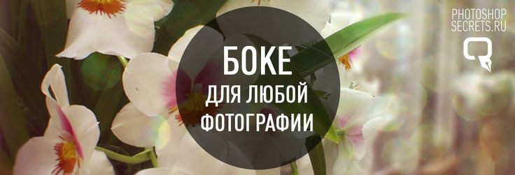 """Добавление эффекта """"Боке"""" к фотографии в Фотошоп ..."""