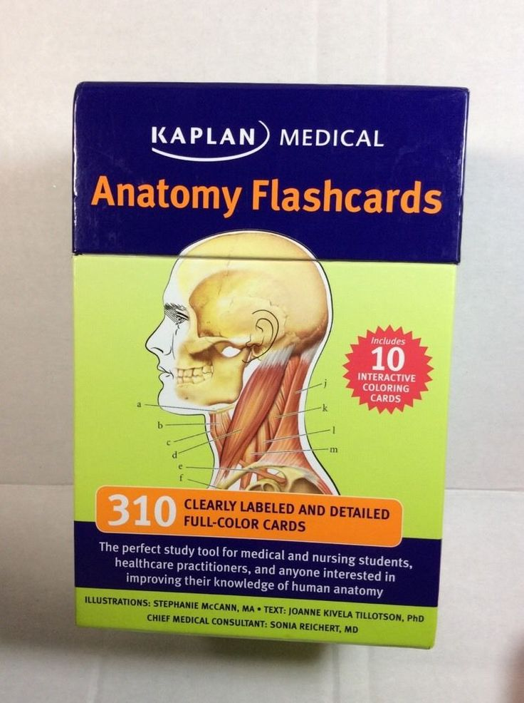 Magnificent Human Anatomy Flash Cards Online Free Picture Collection