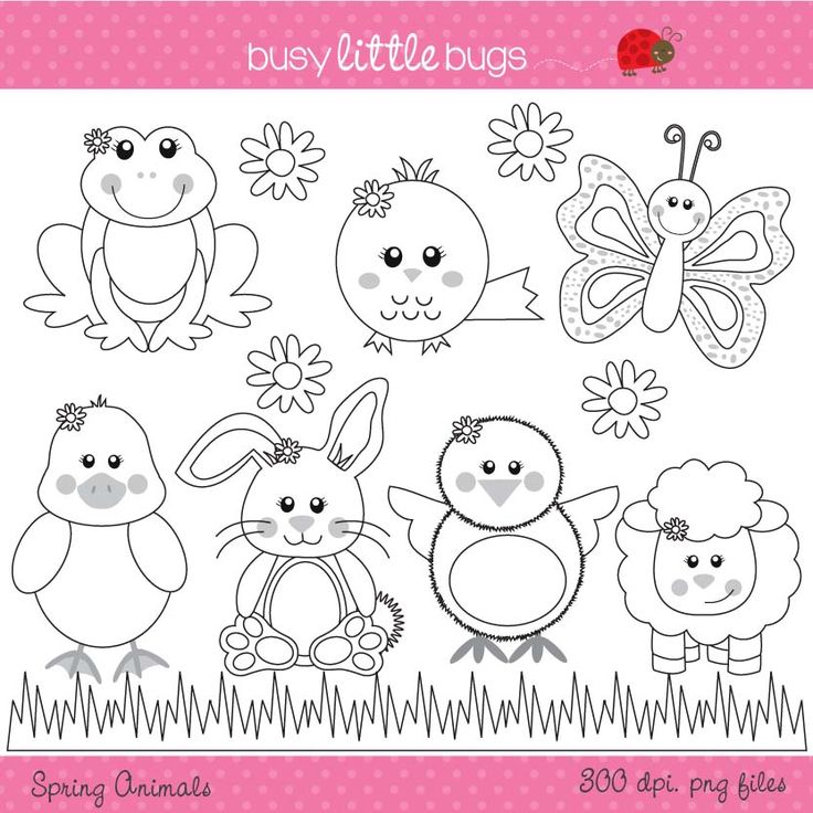 Super cute Spring time animals set of clipart.