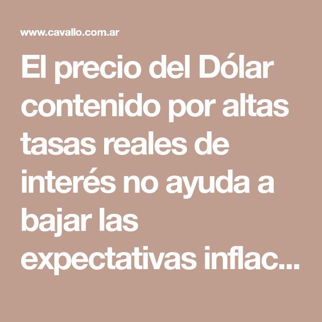 El precio del Dólar contenido por altas tasas reales de interés no ayuda a bajar las expectativas inflacionarias | Domingo Cavallo