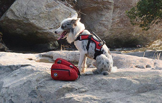 Ospet Hunderucksack Schultertasche Satteltasche Fur Hunde Grossenverstellbare Haustiertasche Mit Reflektierender Strei Hunderucksack Satteltasche Spielzeug Hund