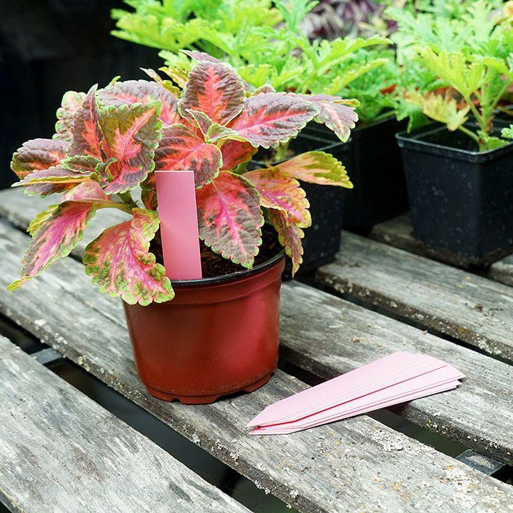 Plantetiketter 20-pack, rosa #Plantetiketter #Växtetiketter