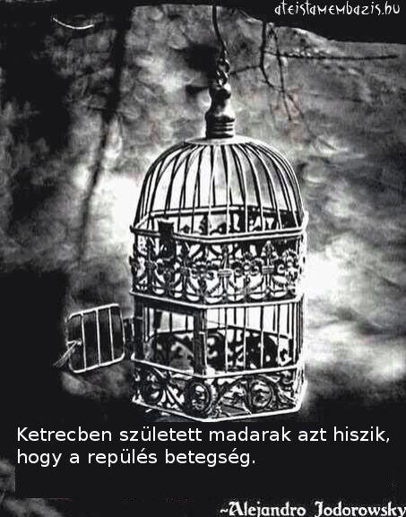 Alejandro Jodorowsky gondolata az eltérő nézőpontokról. A kép forrása: Magyar Ateista Mémbázis