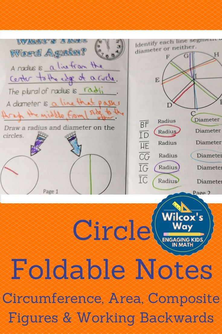 Area Of Circles And Circumference Folding Notes Math Notebooks