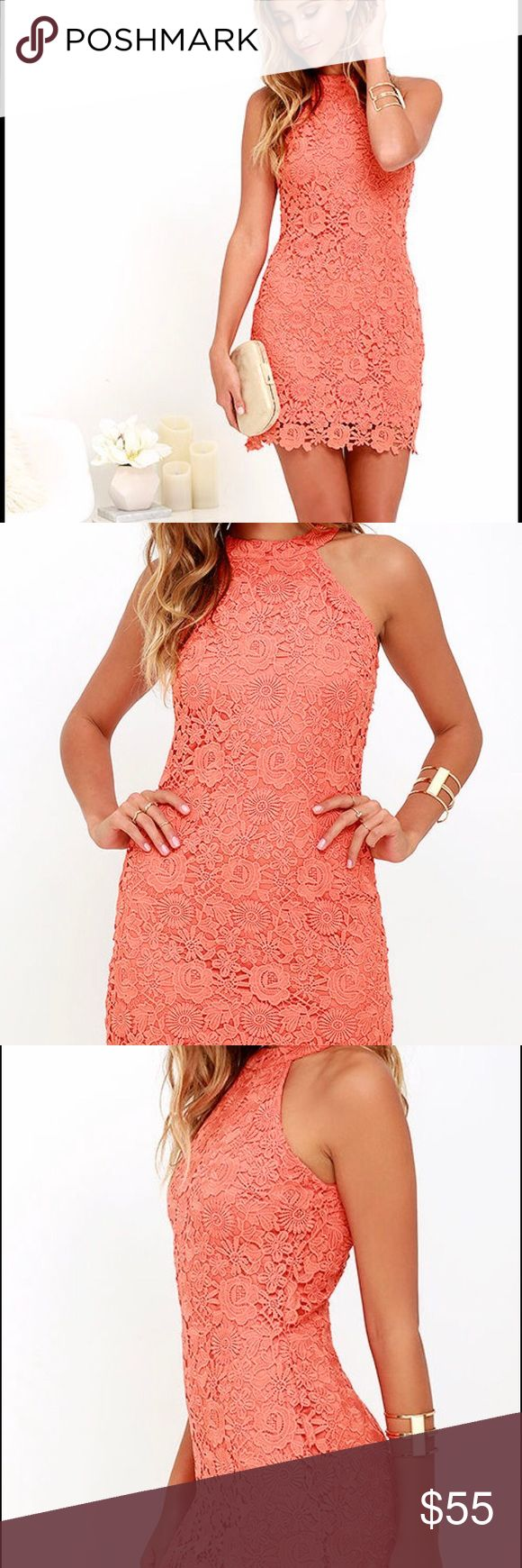 Love Poem Coral Lace Dress by Lulus (XS) NEW NEW (no tags) Short Coral Lace Dress. Back zipper. Size XS by Lulus Lulus Dresses Mini