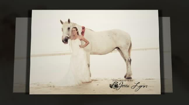 """'Weddings In Paradise, SWFL Beach Weddings presents """"The Majestic"""" with special appearance by Charlene's Classic Carriage's beautiful Mare. All photo's by Photography By Jerri Lynn'. Click to watch the video!"""