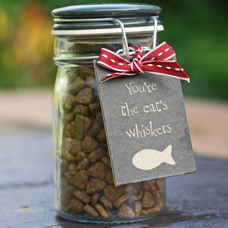 delicious cat treats in storage jar by the wedding of my dreams   notonthehighstreet.com