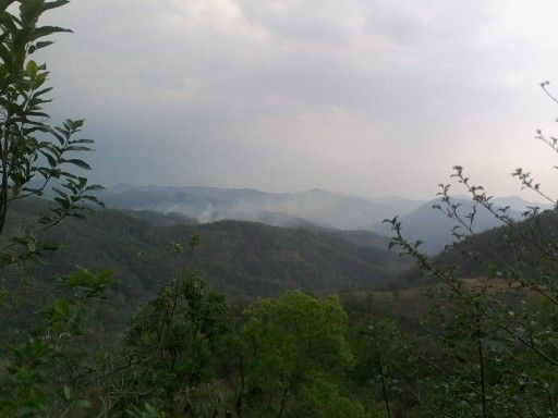 Landscapes hilly area in kohima #nature
