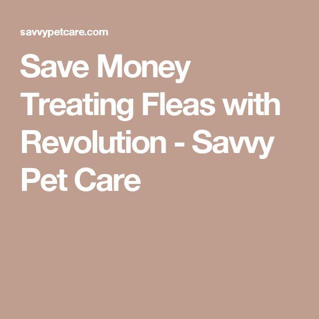 Save Money Treating Fleas with Revolution - Savvy Pet Care